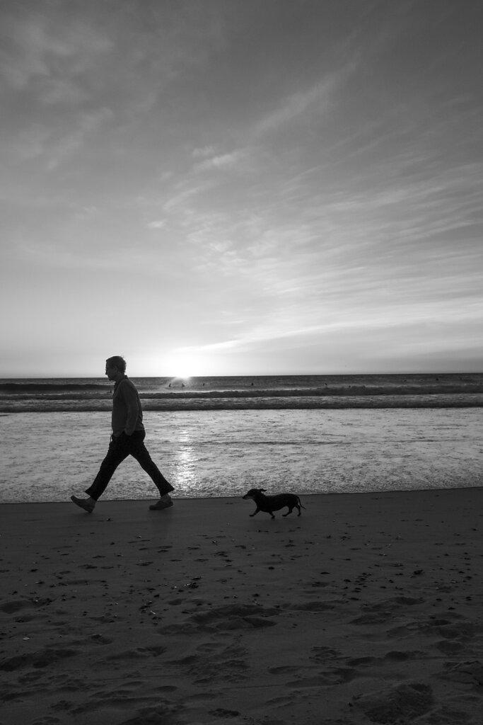 walk-the-dog-2886.jpg